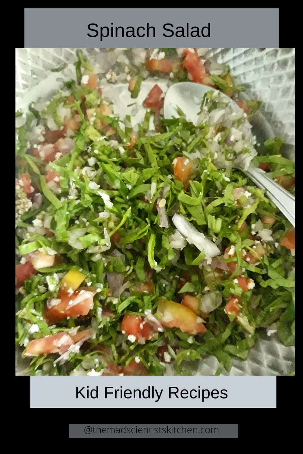 Tossing up the palak salad