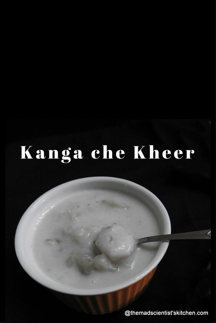 Goan Kanga che Kheer|Sweet Potato Pudding
