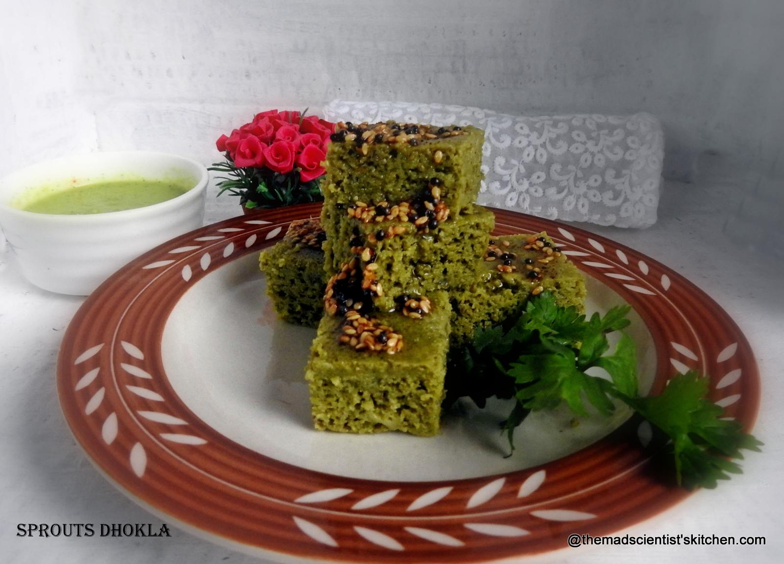 Protein Rich Sprouts Dhokla