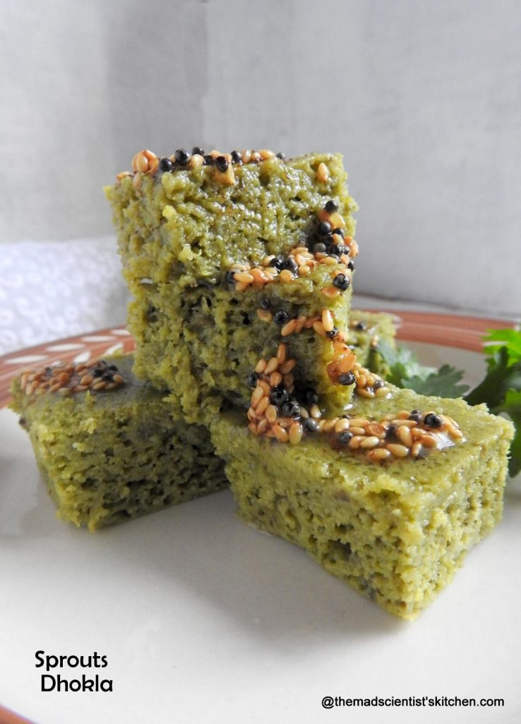 Sprouts and Spinach Steamed Dhokla