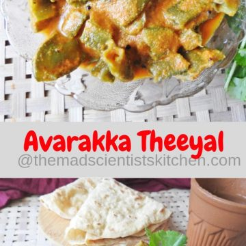 Avarakka Theeya,Broad Beans in a Coconut Tamarind Sauce ,Kerala Collection