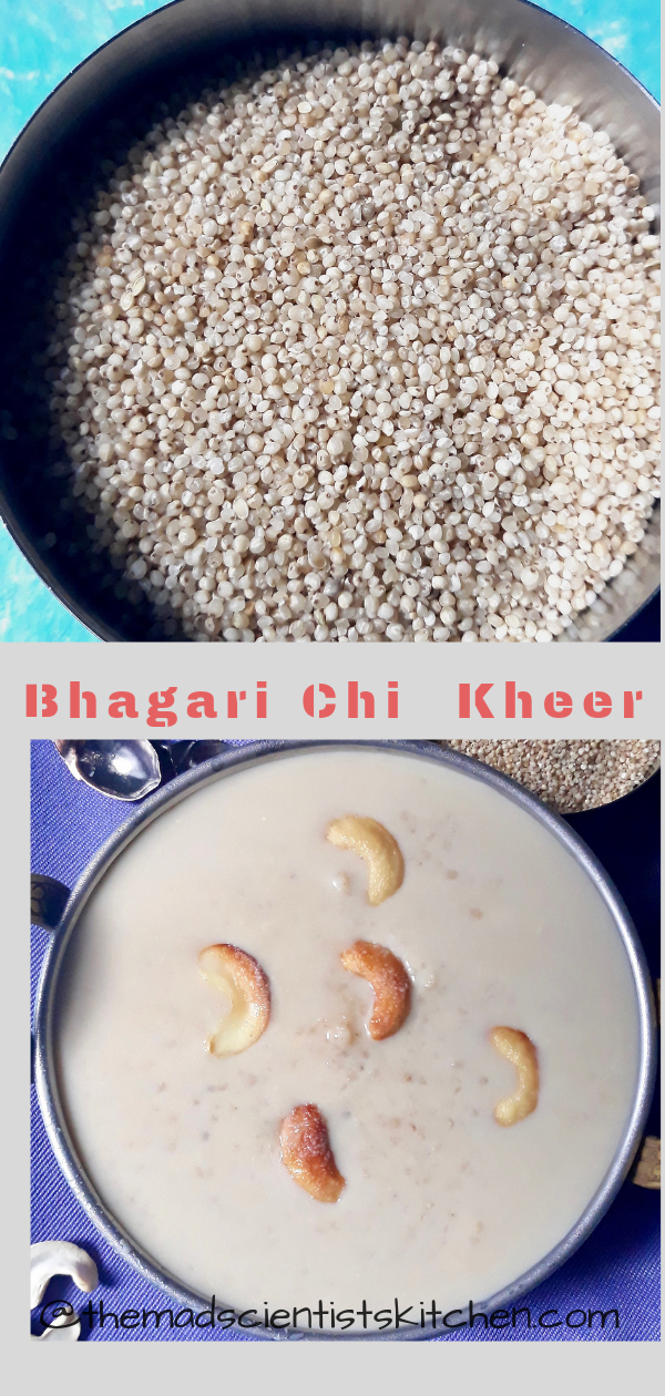 Kheer, Payasam made from millets