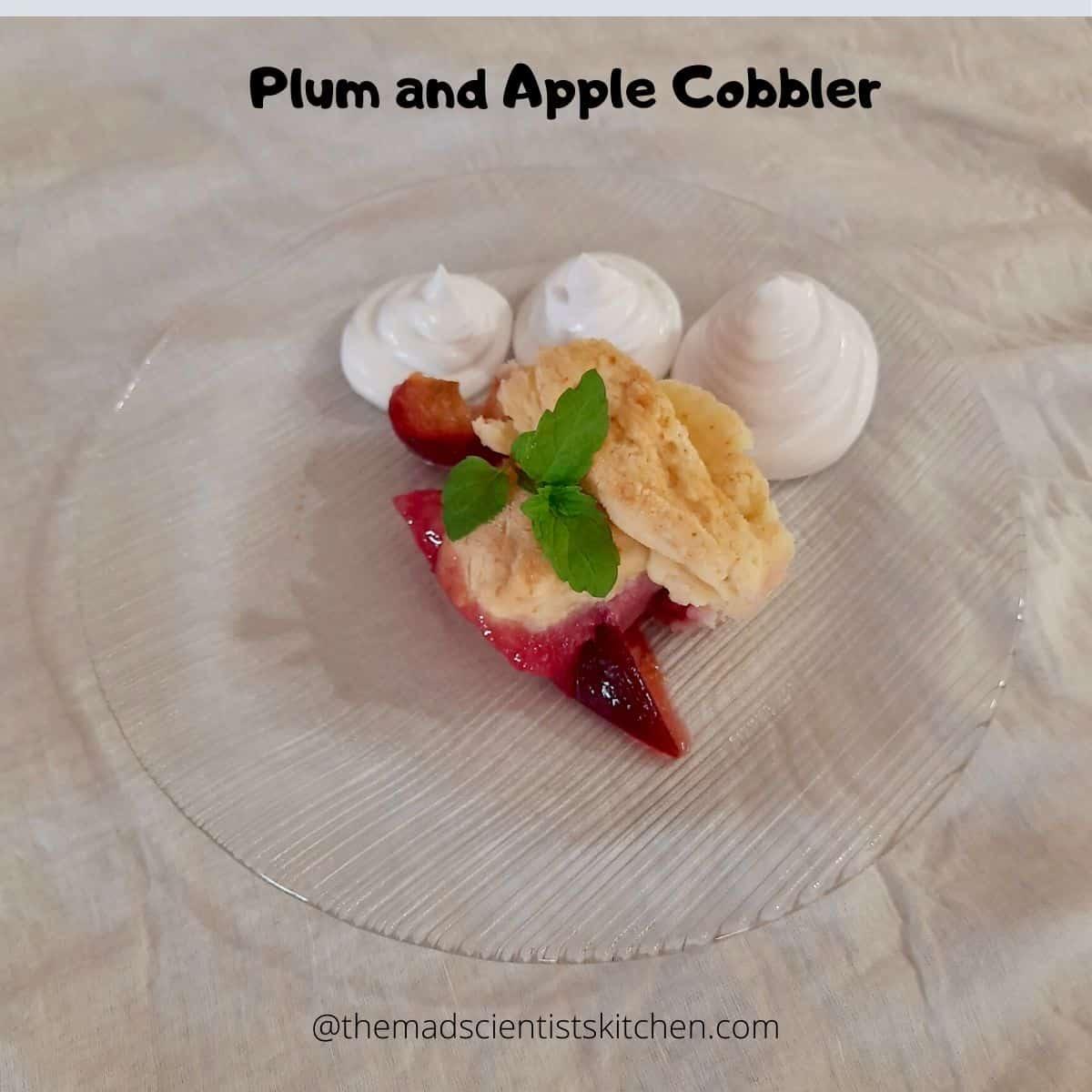 A serving Plum and Apple Cobbler as dessert after dinner.