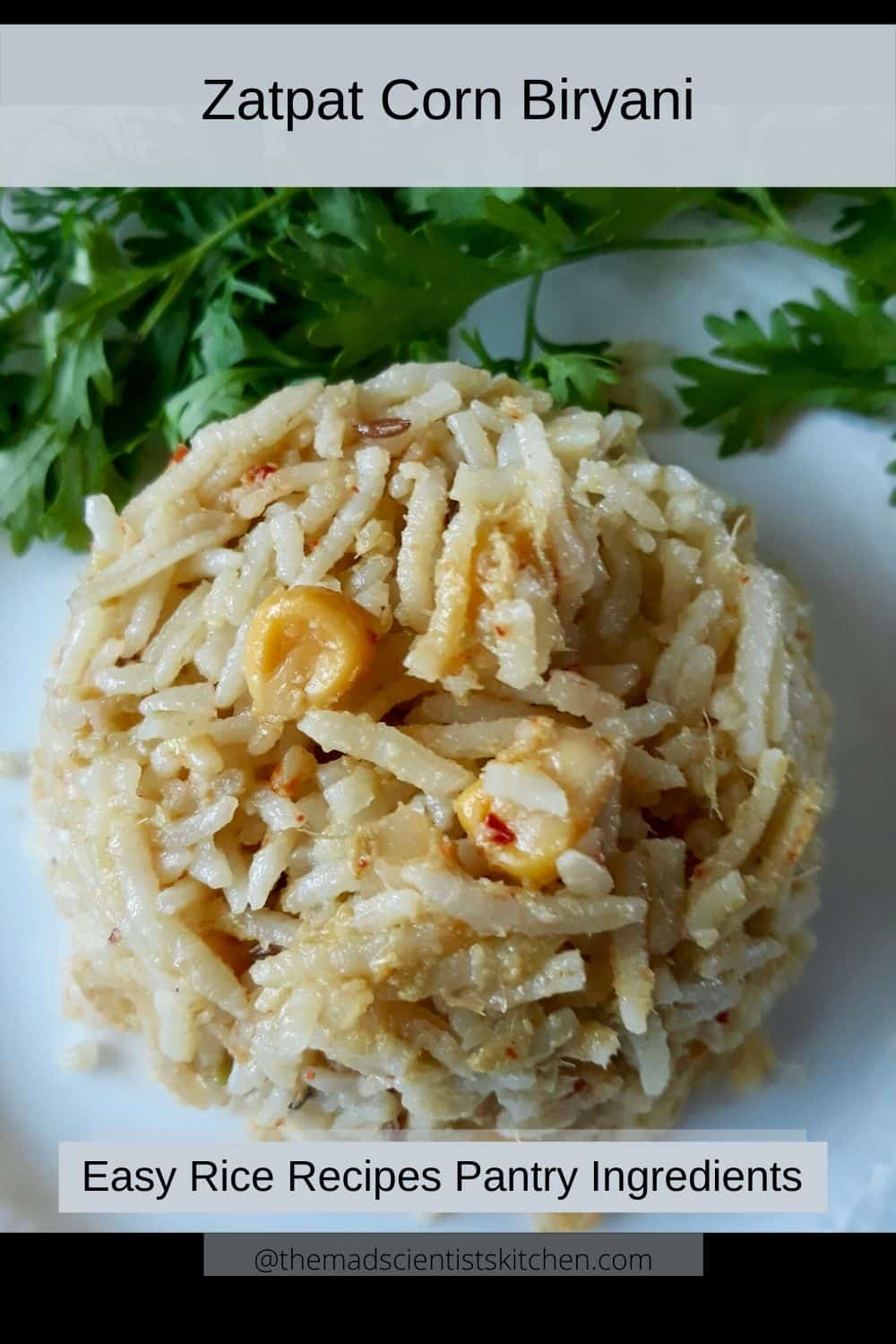 Zatpat Corn Biryani, a simple rice dish