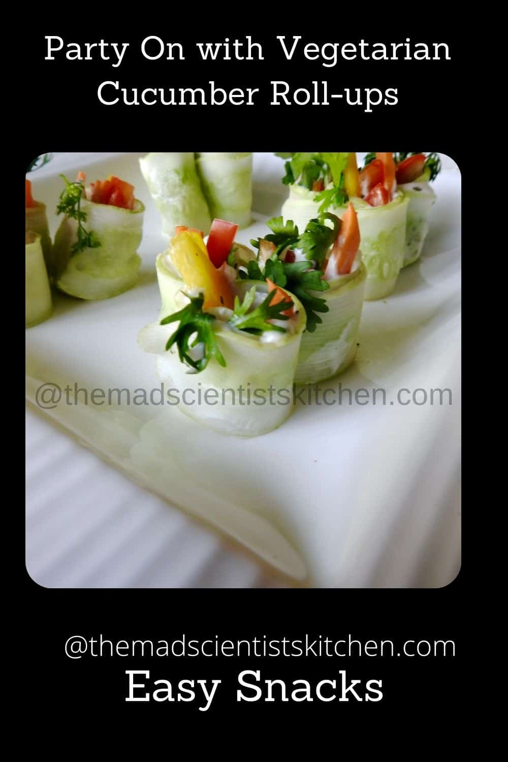 yum appetisers fresh and delicious veggies rolled up in cucumber slices